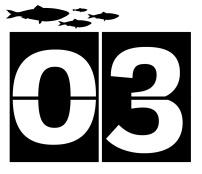 TWT 30 Days Wild_countdown_03